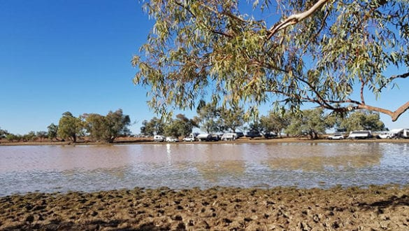 Camped at the Lake at Quilpie