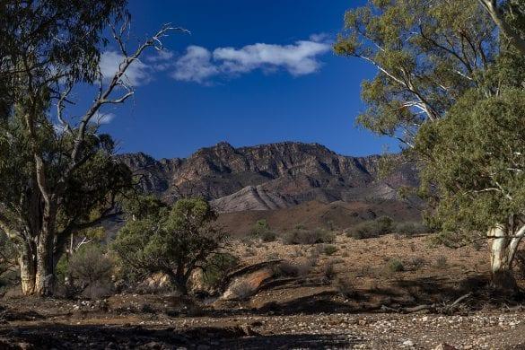 Flinders Ranges - Bob Lewis